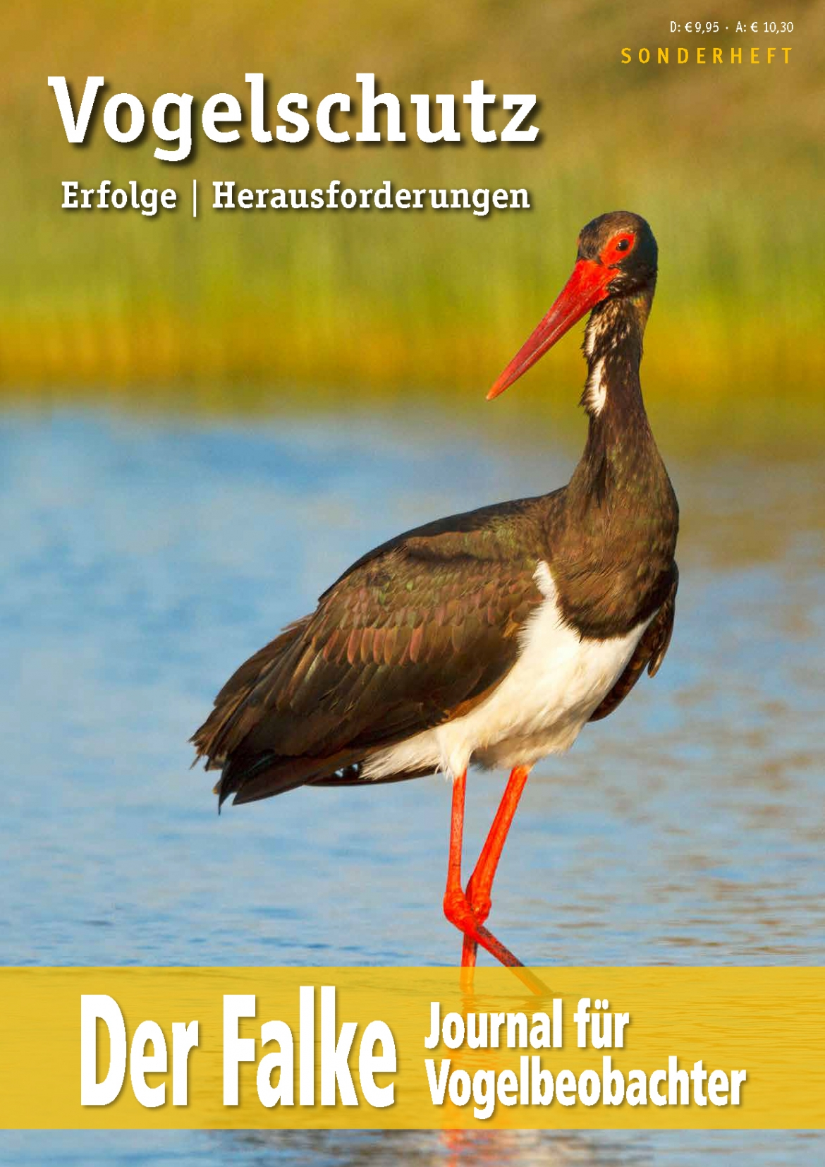 Cover-Sonderheft-Falke-2017-Vogelschutz.jpg