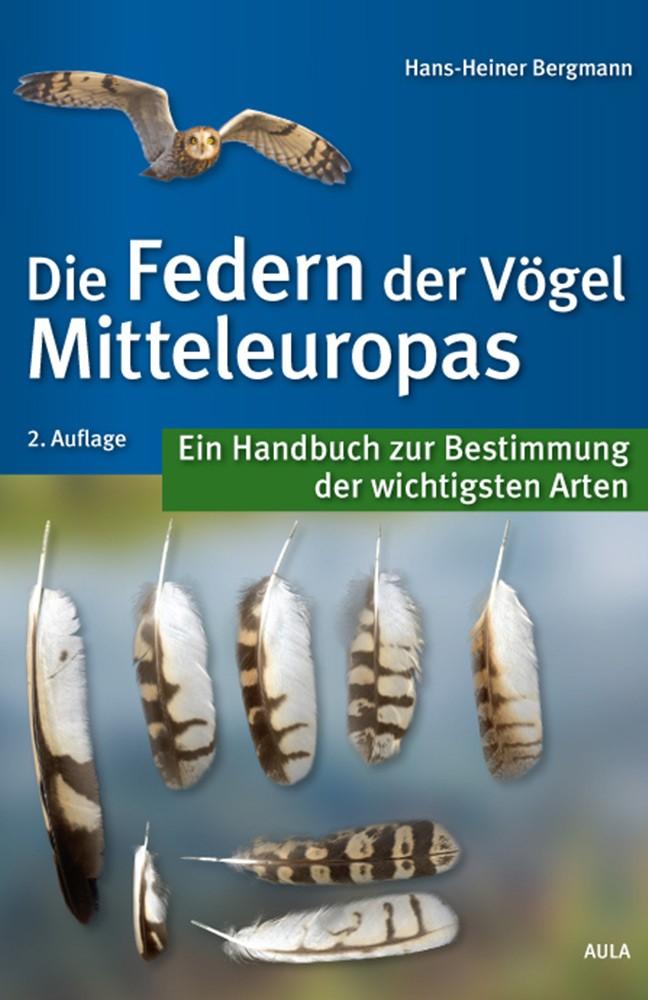 Bergmann-Federn.jpg