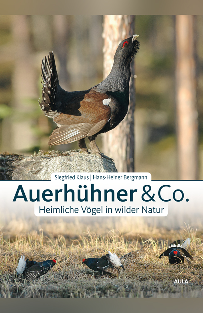 Klaus-Auerhühner.jpg