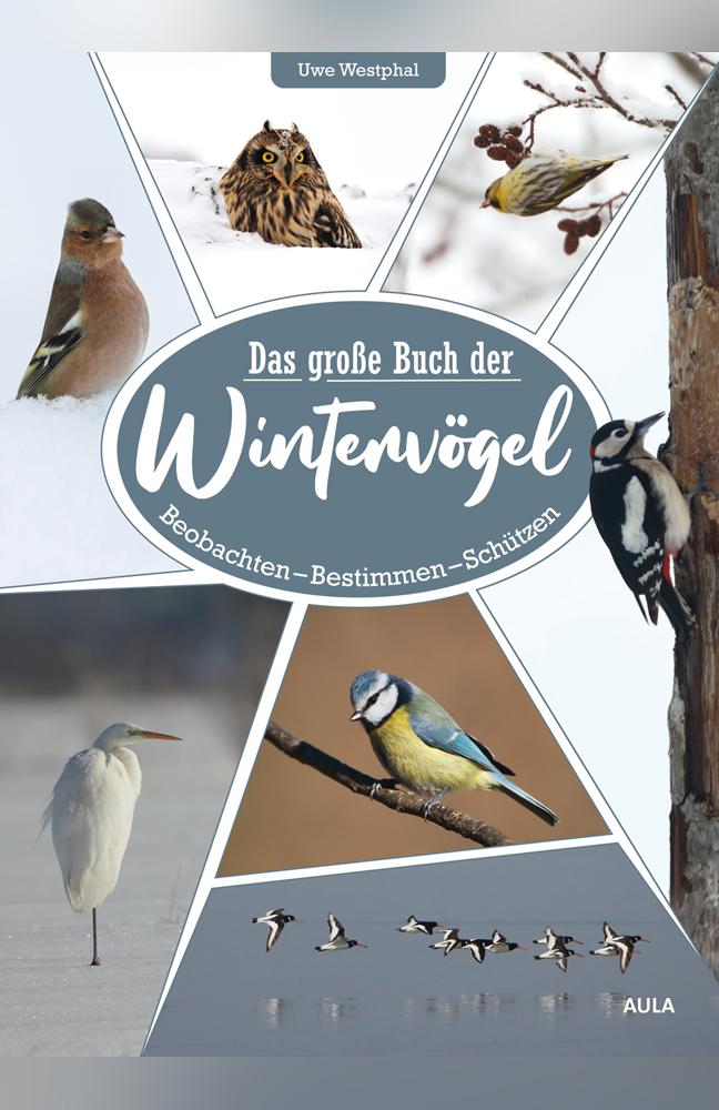 Westphal-Wintervögel.jpg