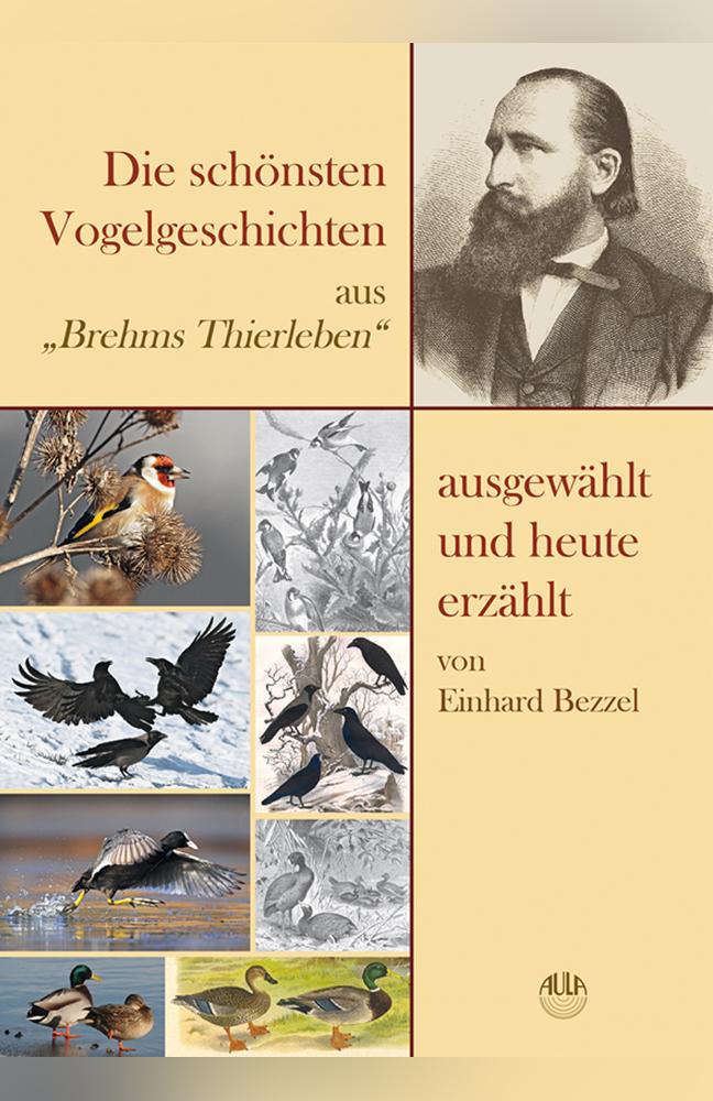 Bezzel-Vogelgeschichten.jpg